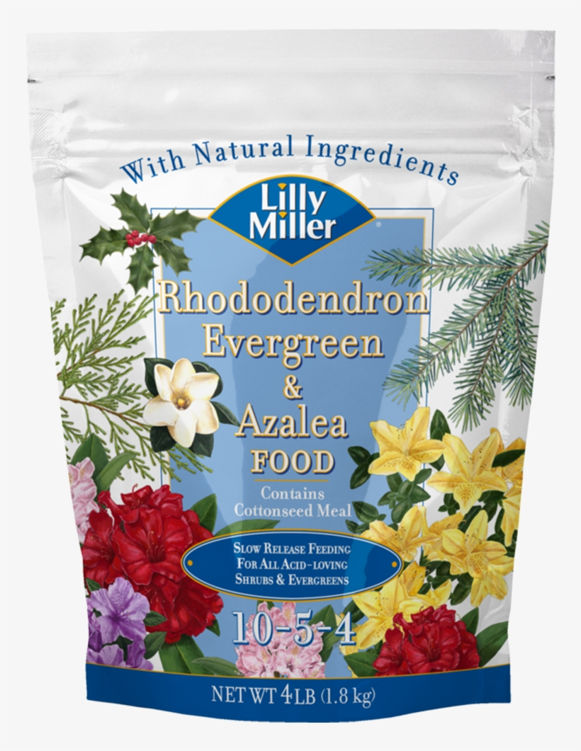 Lilly Miller Rhododendron Evergreen & Azalea Food Plant - Lilly Miller Lilly Miller Morcrop Vegetable Food, transparent png #3120031