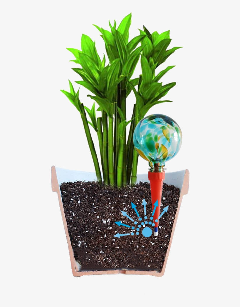 Do You Love Houseplants But Hate The Chore Of Watering - Plantpal Watering Globe Plant Watering System, transparent png #3138553