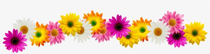 Spring Flower Border Clipart Flower Border Line Clipart Free