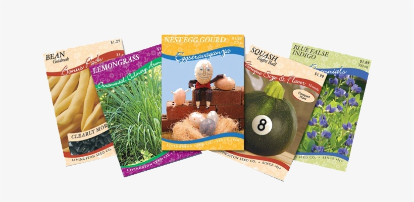 Seed Packets - Nest Egg Gourd 50 Seeds - Paint As Easter Eggs!, transparent png #3141634