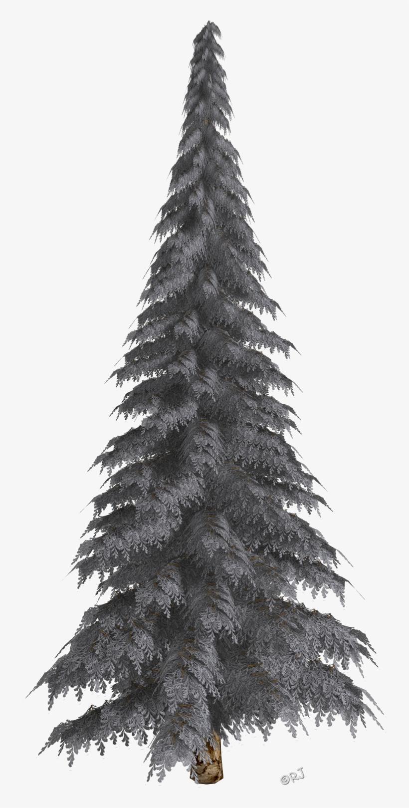 Winter Trees Christmas Trees Christmas Tree Free Transparent