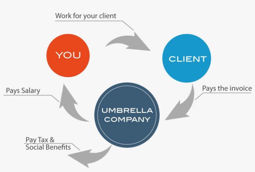 Flowchart Of Umbrella Employment - Does An Umbrella Company Work, transparent png #3143993