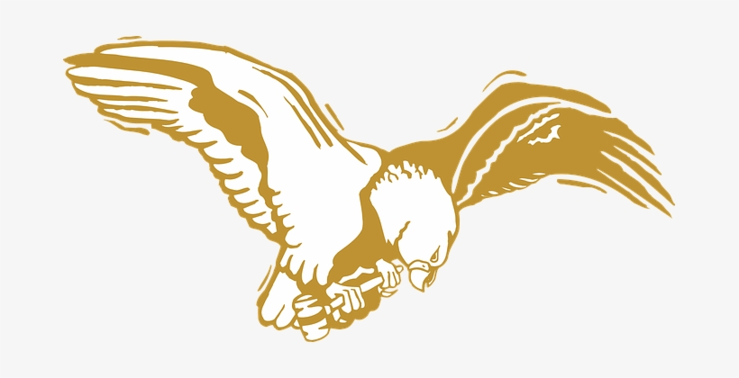 Eagle, Bird, Gold, Wings, Feathers - Golden Eagle Clip Art, transparent png #3145386