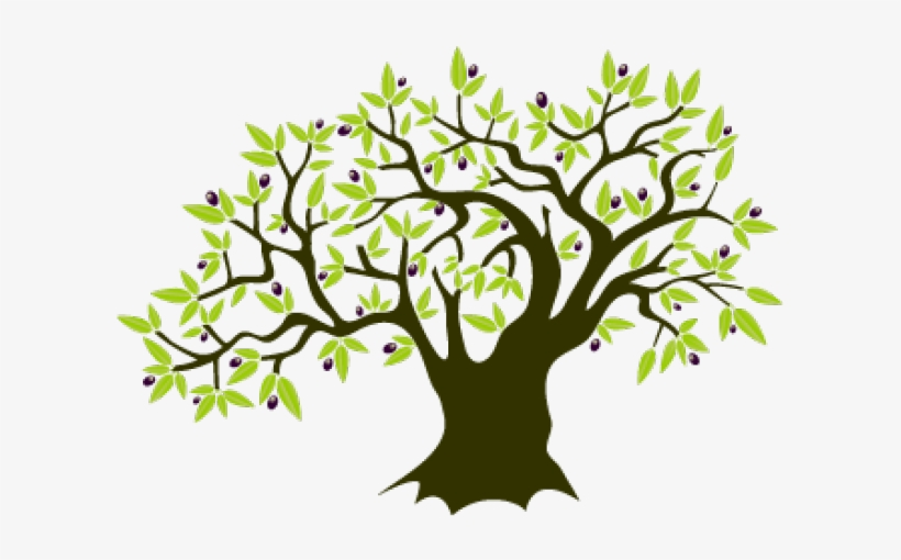Olive Tree Clipart Free Transparent Png Download Pngkey