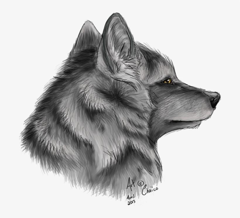 Drawings Drawing Ideas Cool Wolf Drawings Luxury Cool Zorro Dibujo