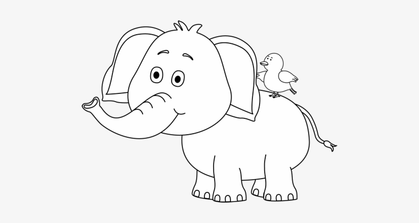 Black And White Elephant And Bird Circus Clipart Black And White Free Transparent Png Download Pngkey All content is available for personal use. bird circus clipart black and white