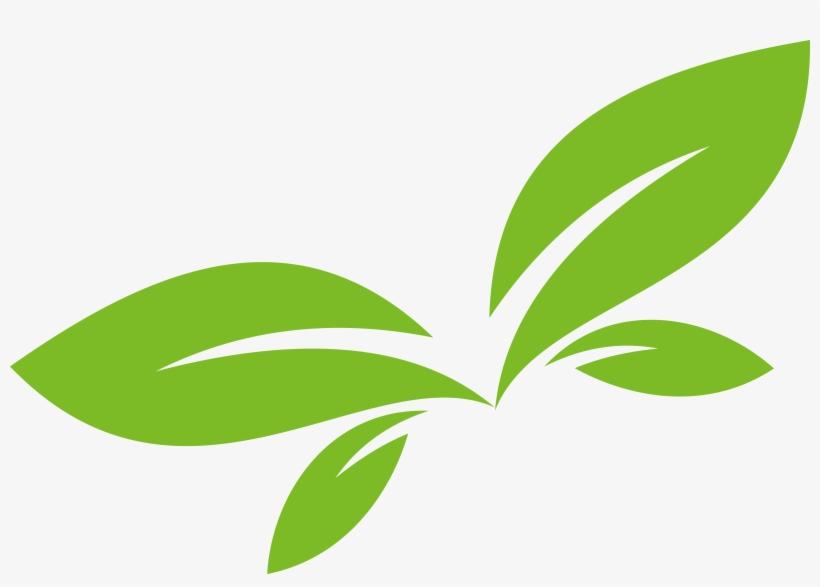 Leaf Logo Euclidean Vector Png Free Vector Leaf Free Transparent Png Download Pngkey