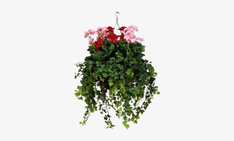 Hanging Baskets, Container Gardening, Artificial Flowers, - Flower Hanging Baskets Png, transparent png #3225802