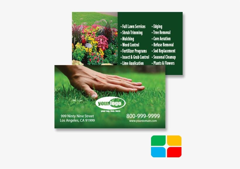 Landscaping Business Cards Landscape Business Cards - 1000 Pcs Lawn Seeds Tall Fescue Grass Low Maintenance, transparent png #3239091