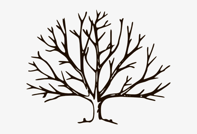 Clipart Empty Tree Chocolate Clip Art At Clker Com - Draw A Winter Tree, transparent png #3249740