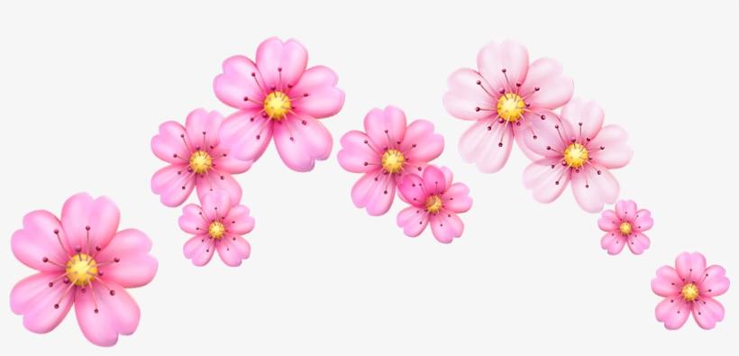 Report Abuse - Cherry Blossom Flowers Emoji, transparent png #3252035