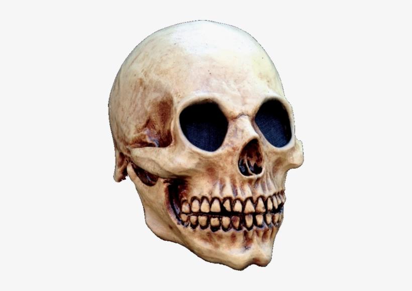 Old Skull Skeleton Horror Mask - Head Skull Halloween Mask, transparent png #3255583