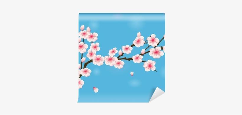 Vector Illustration Of Cherry Blossom Wall Mural • - Illustration, transparent png #3264758