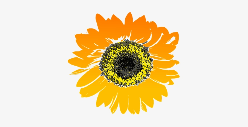 67 Free Vector Graphics Of Sunflower - Sun Flower Phone Case - Iphone 6/6s, transparent png #3280565