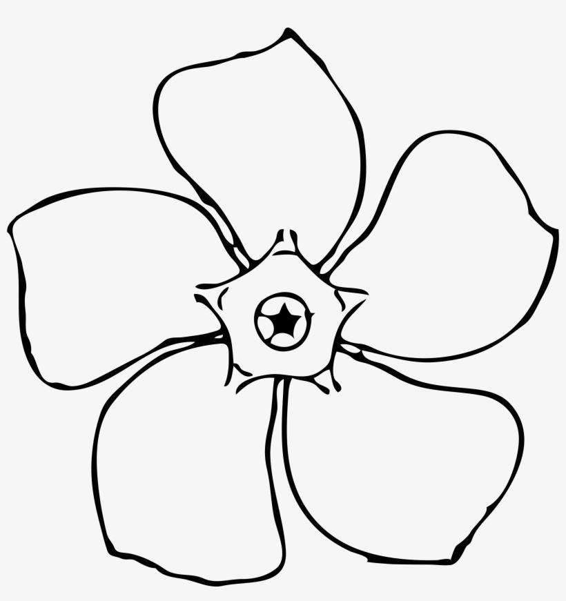 Images For Magnolia Flower - Periwinkle Flower Outline, transparent png #331364