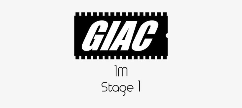 Bmw 1m Giac Stage 1 Performance Ecu Software Upgrade - Giac