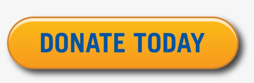 Donate Today Button, transparent png #3342297