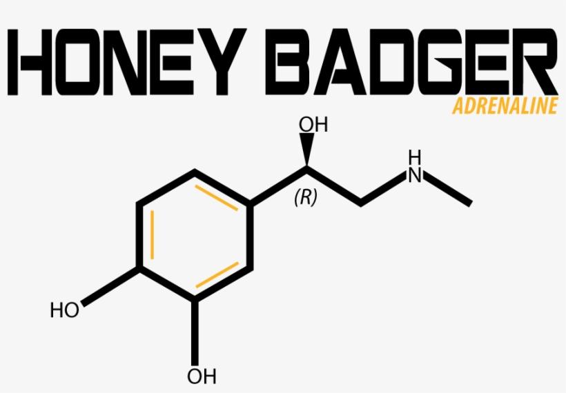 modern, professional, fitness t-shirt design for honey - diagram