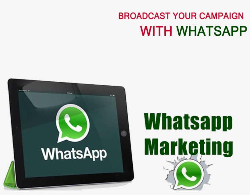 Whatsapp And Sms Marketing - Free Transparent PNG Download - PNGkey