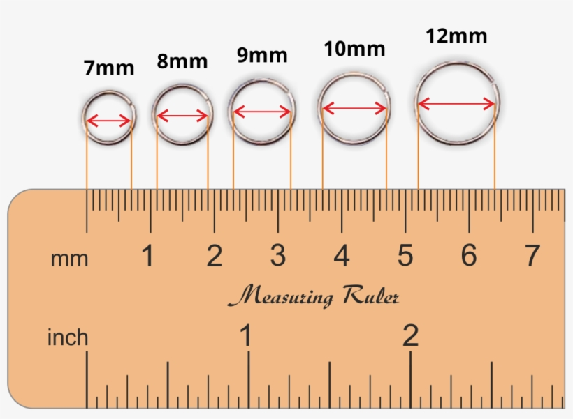 Nose Ring Sizes Chart Piercing Transpa Png 3415525