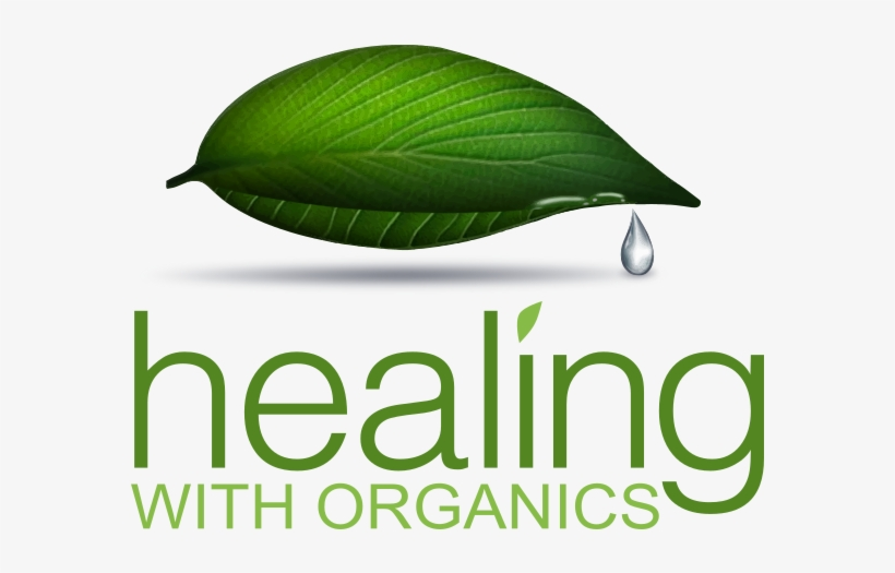 2016 Healing With Organics - Interactive Learning Experiences, Grades 6-12, transparent png #3446918