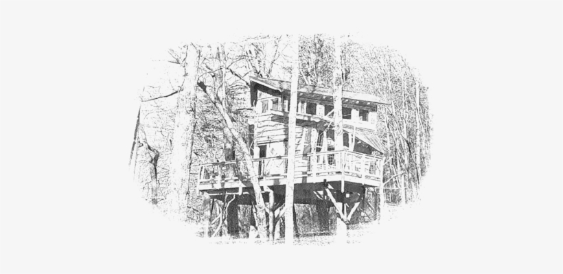 The Blue Ridge Treehouse Is Located At Bear Claw Vineyards - Blue Ridge Treehouse, transparent png #3449114