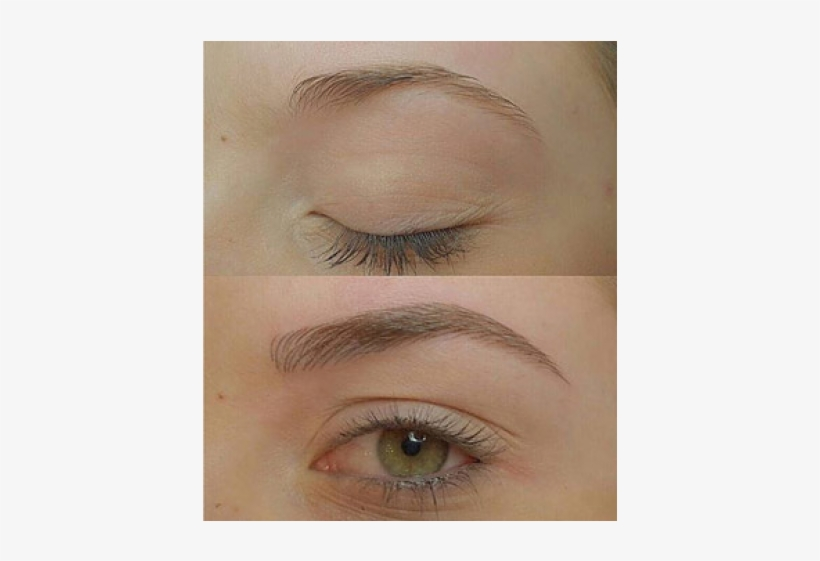 Previous - Light Brown Microblading Eyebrows, transparent png #3487495
