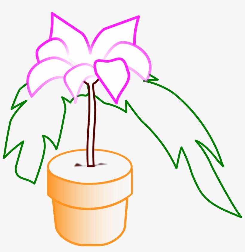 How To Set Use Planta Icon Png Nochebuena Png Dibujo Free