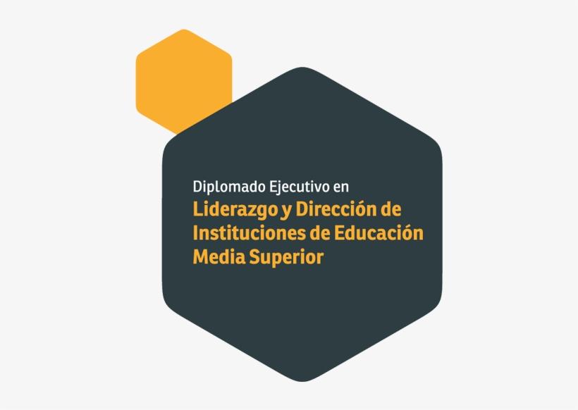 Diplomado Ejecutivo En Liderazgo Y Dirección De Instituciones - Instituto Europeo De Salud Y Bienestar Social, transparent png #3546411