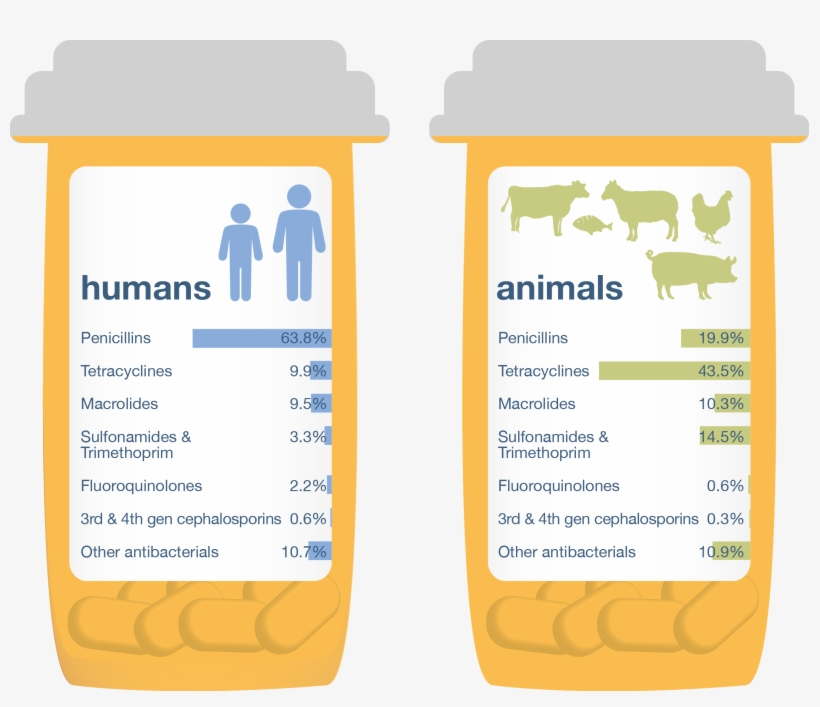 One Health Report, 2015 Using 2013 Data - Antibiotics Used, transparent png #3554342
