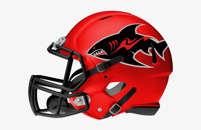 With The Nal, Afl, Ifl, And Cif The Competition For - South Carolina Gamecocks Football Helmets, transparent png #3558948
