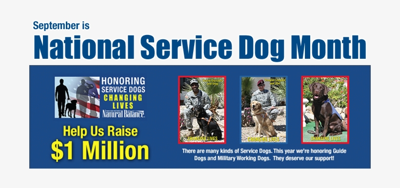 National Service Dog Month With Natural Balance - Service Tax Ready Reckoner 25th Edn 2015, transparent png #3584669