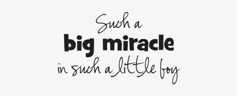 Best Dream Big Quotes For Kids Big Miracle Little Boy Funny Little