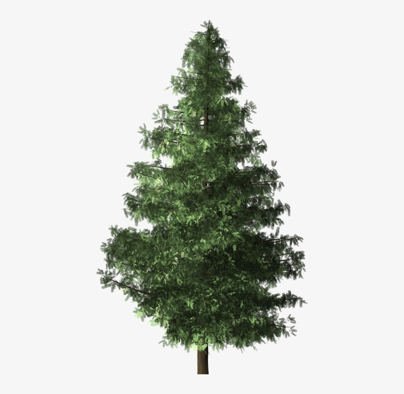Pohon Cemara Png Brushes Trees Top Photoshop Free Transparent Png Download Pngkey