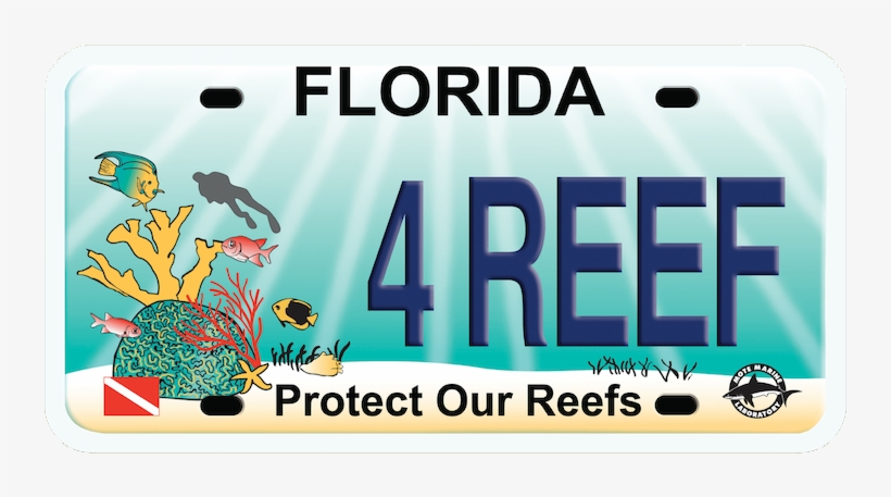 Protect Our Reef Plate - Florida For Bernie Large Tote Bag, Natural, Large, transparent png #377122