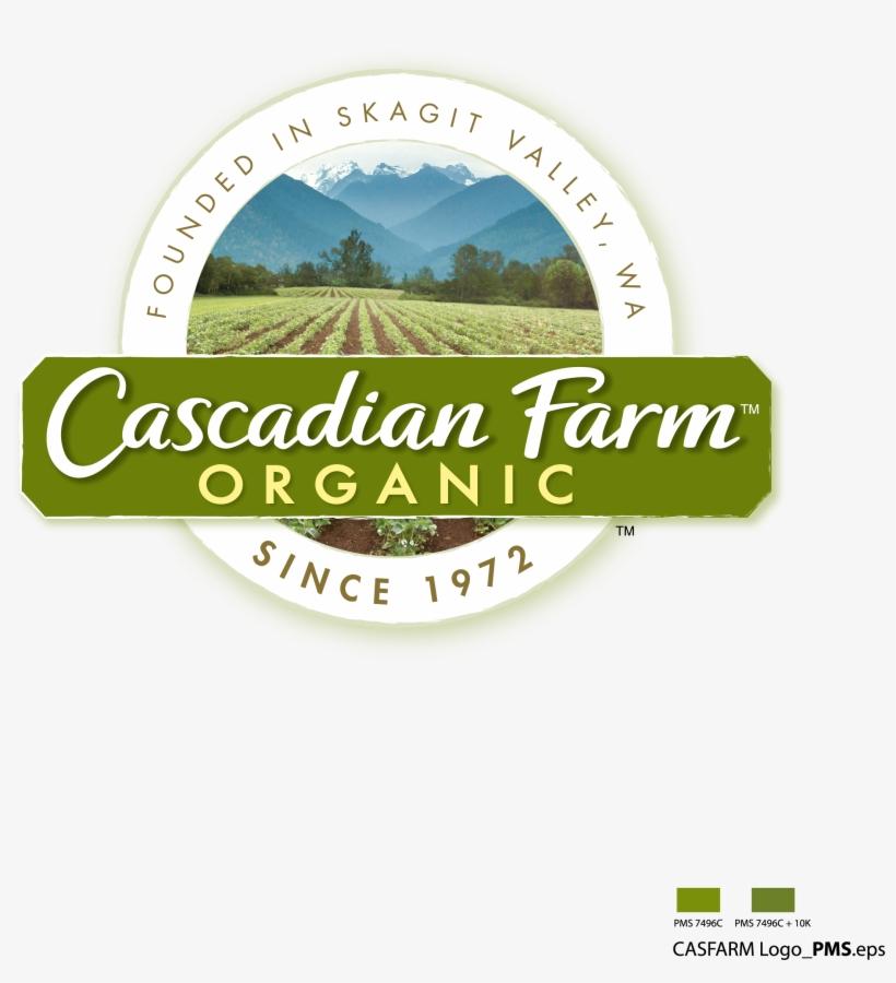 Close Up For Threshed Kernza Perennial Grain Seeds - Cascadian Farms Logo Transparent, transparent png #3732958