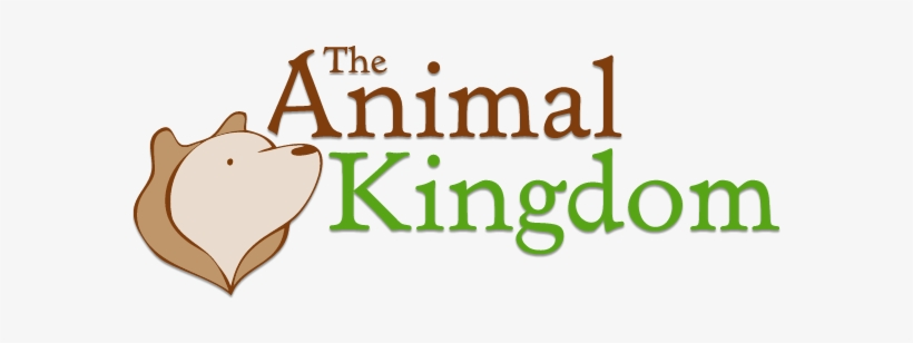 The Animal Kingdom - Animal Kingdom Front Page, transparent png #3737880