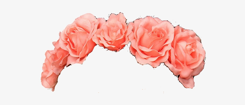Flower Crown Transparent Tumblr Flower Transparent - Flower Crown Pink Png, transparent png #3745023