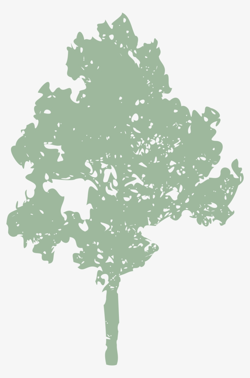 Dead, Dying, Diseased Or Dangerous Trees - Gildan Mens Classic Long Sleeve T-shirt, transparent png #3793890