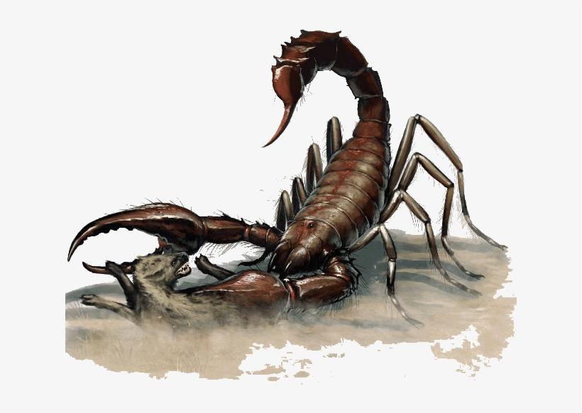 Scorpion, Giant - Dnd 5e Giant Scorpion, transparent png #381960