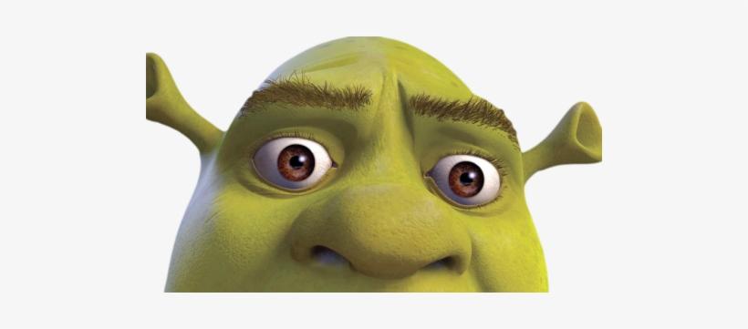 Who's Your Shrek Soulmate - Shrek Depression, transparent png #383567
