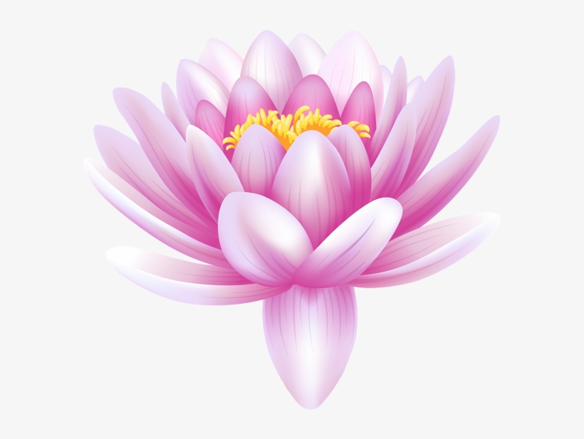 Water Lily Transparent Png Clip Art Image - Water Lily Flower Png, transparent png #389898