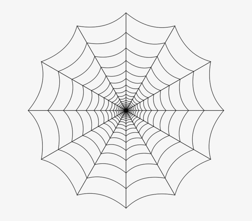 Spider Web Transparent Background