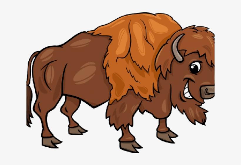 Yak Clipart Female Buffalo Illustration Free Transparent Png