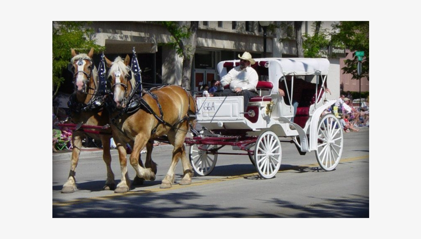 Have A Galloping Good Time At Your Next Event Add Carriage - Duncan Carriages, transparent png #3843955