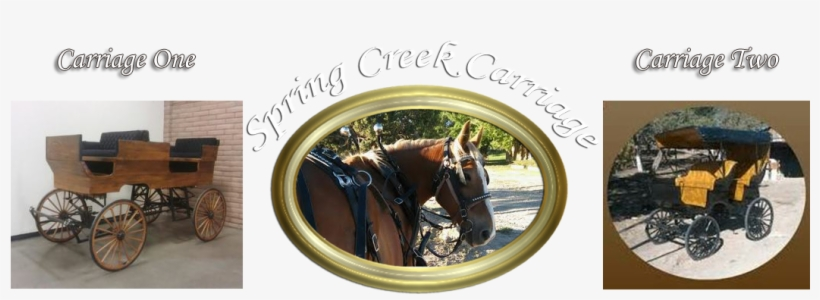 Centrally Located In Southwest Colorado, We Can Easily - Carriages Weddings & Events, transparent png #3844140