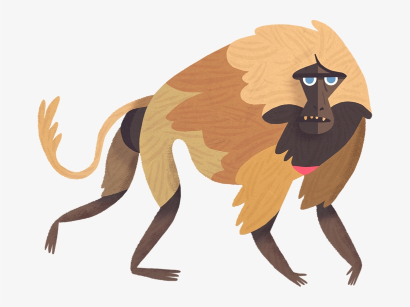 Contact Us About This Article - Mad About Monkeys By Owen Davey, transparent png #3845135