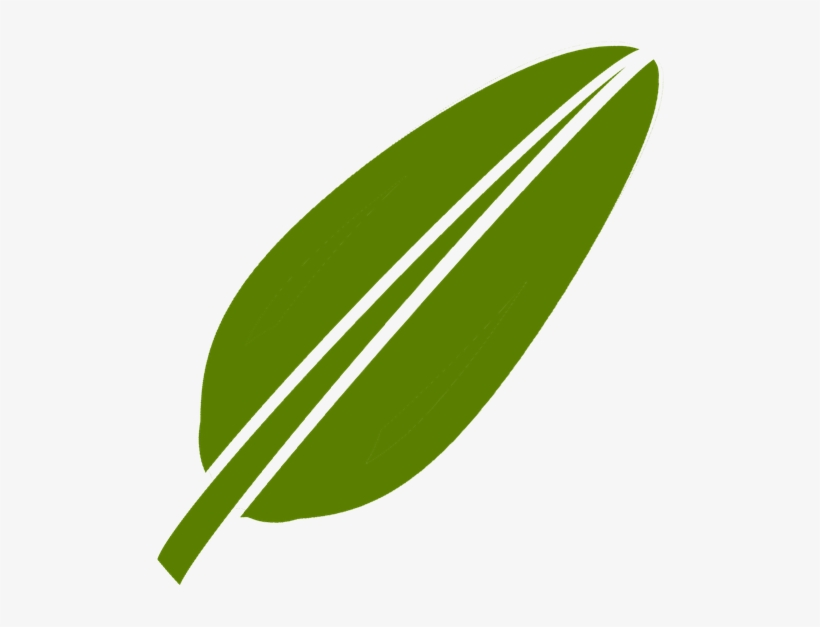 logo daun png vektor daun pisang png free transparent png download pngkey logo daun png vektor daun pisang png