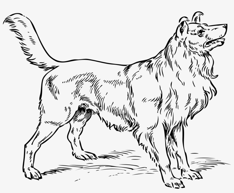 15 Dog Clip Art Big Dog For Free Download On Mbtskoudsalg - Dog Clip Art, transparent png #3855207