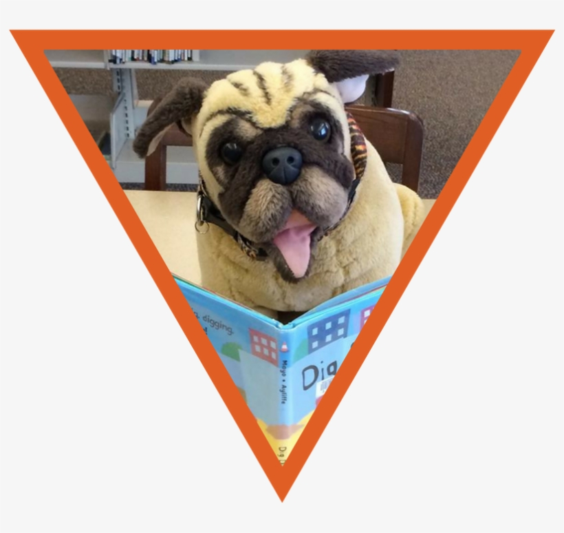 From Storytime To Steam, Summer Reading Programs To - Whitefish Bay Public Library, transparent png #3856115